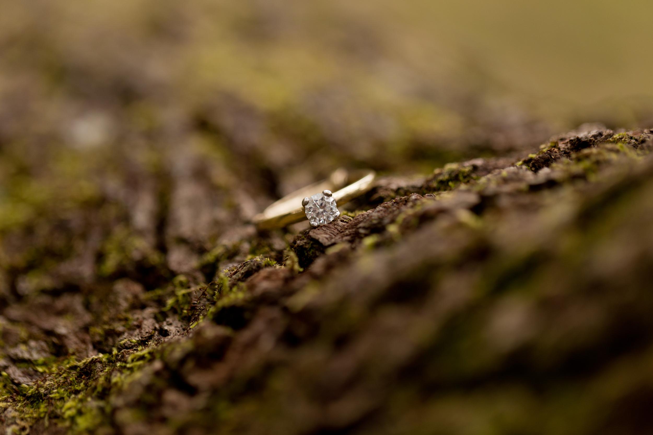 yellow gold diamond engagement ring on mossy tree bark