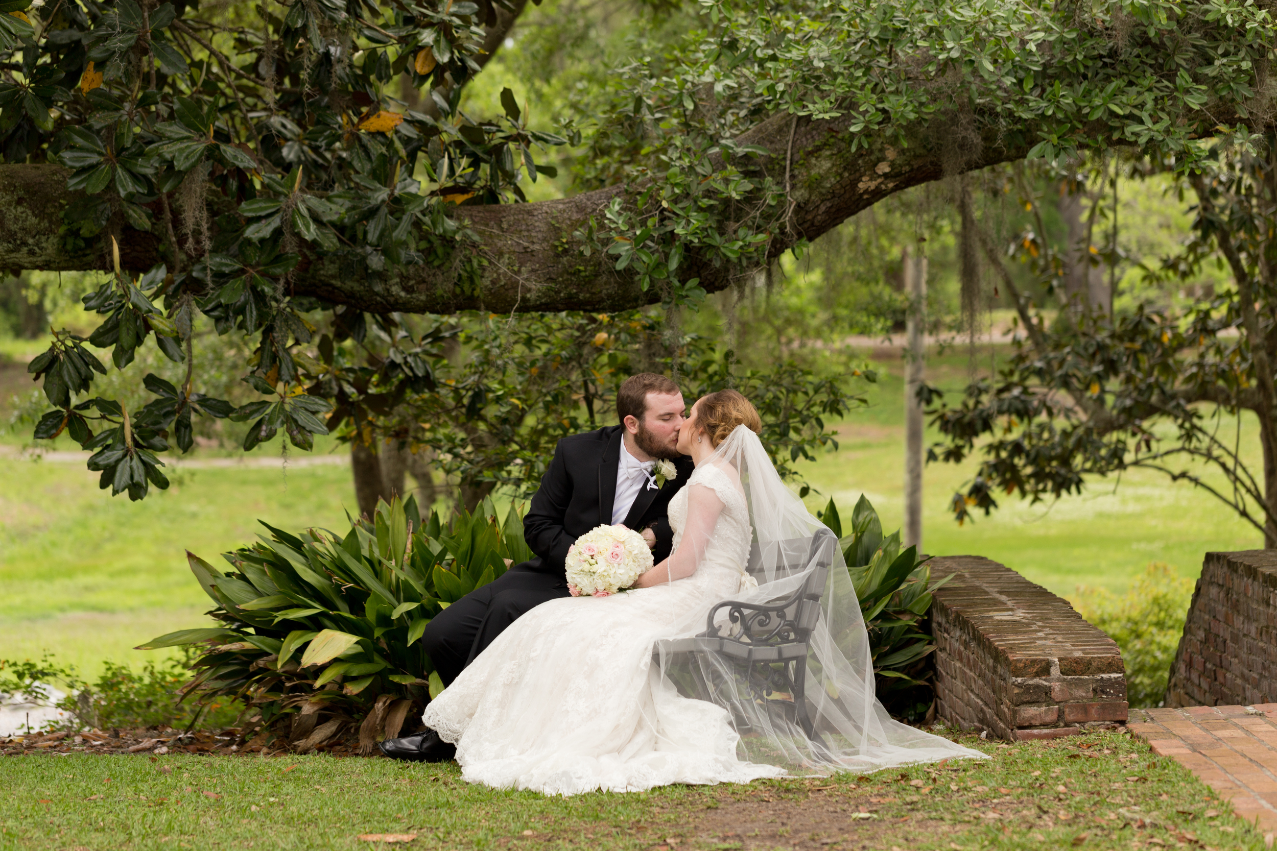 beautiful wedding photo with bride and groom kissing on bench with magnolia and live oak tree at First Presbyterian Church Ocean Springs (Uninvented Colors Photography)