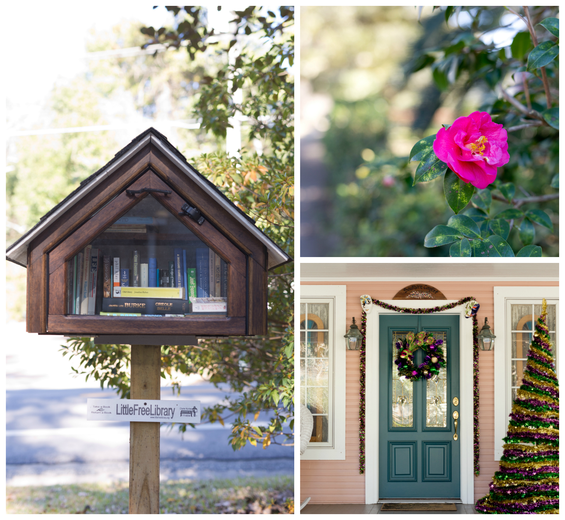 neighborhood details in Fairhope (flower, Little Library, Mardi Gras decor)