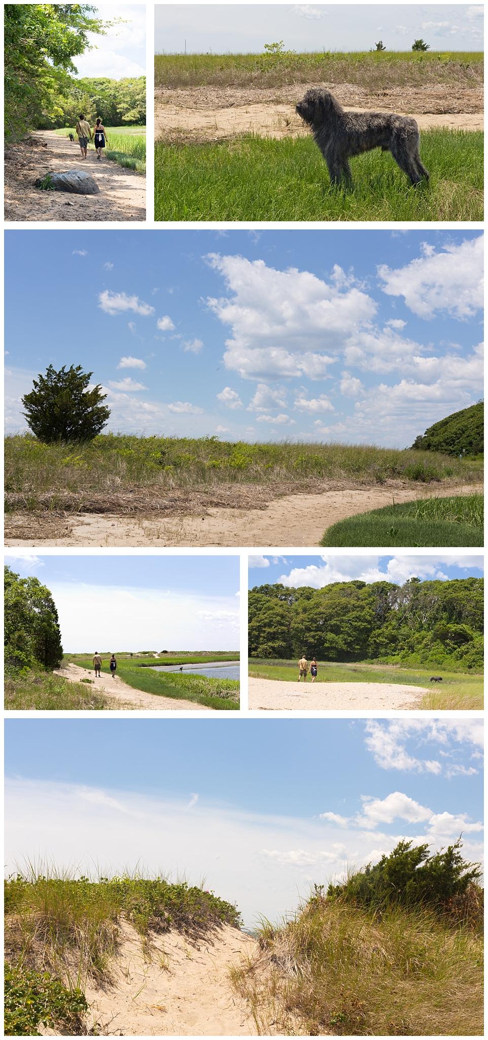 Cape Cod coastal landscapes