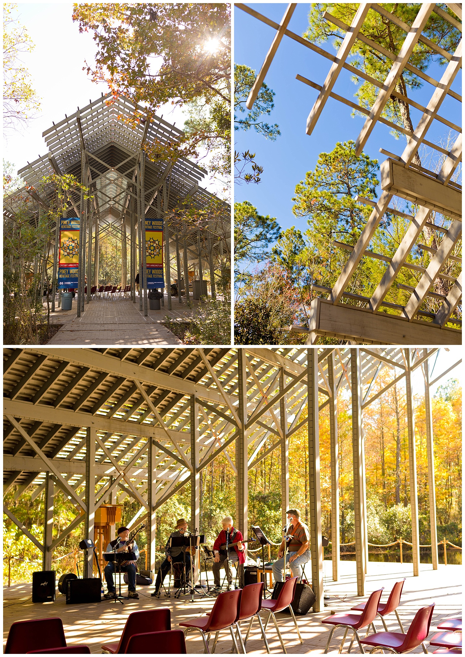Pinecote Pavilion Crosby Arboretum (with bluegrass band)