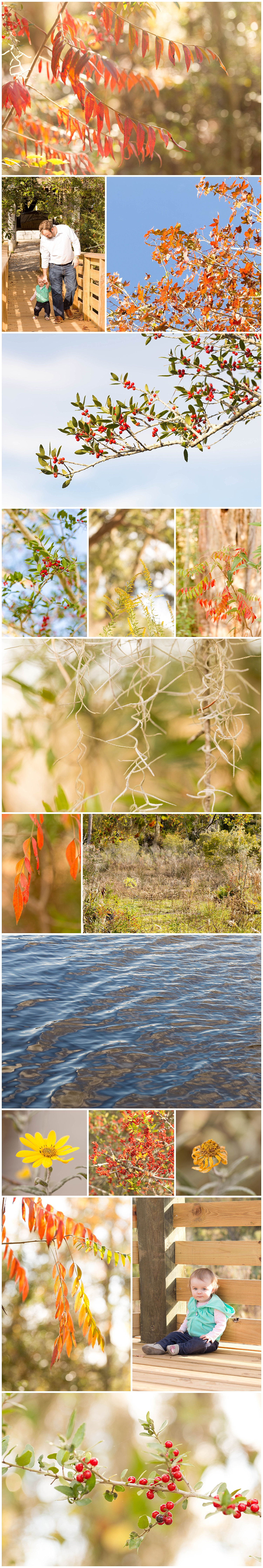 nature photography at Pascagoula River Audubon Center (Uninvented Colors Photography)