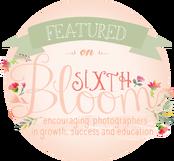 Sixth Bloom.png