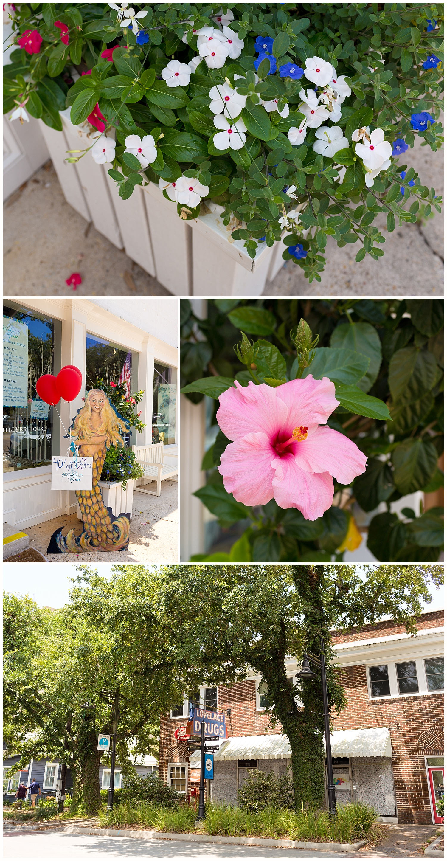 flower and storefronts in Ocean Springs, Mississippi