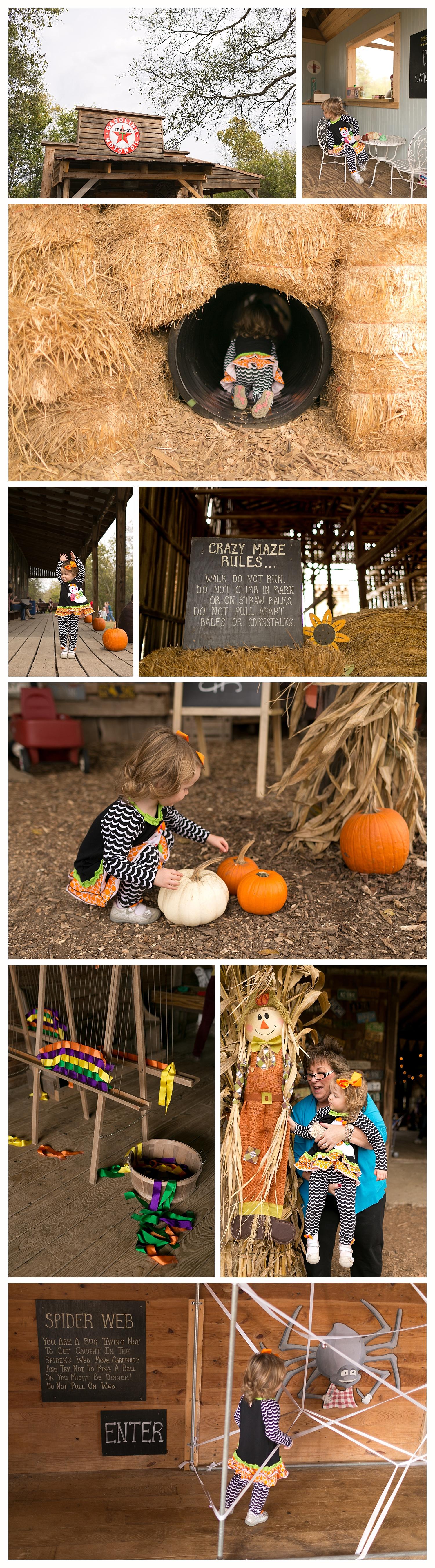 children's activities at Gentry's Farm in Franklin, TN