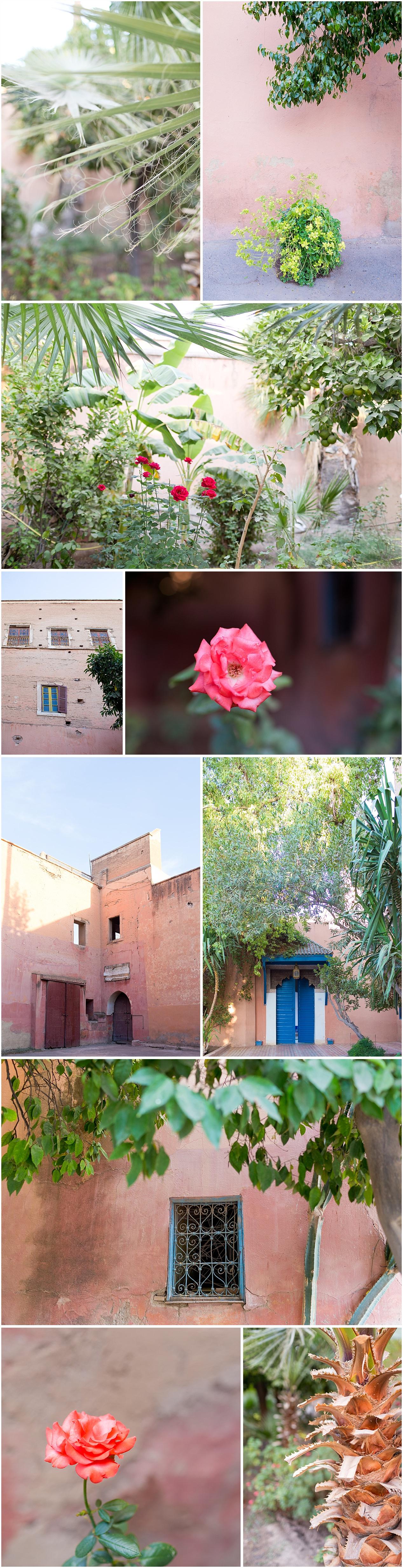 peaceful botanical gardens outside Bahia Palace in Marrakech, Morocco