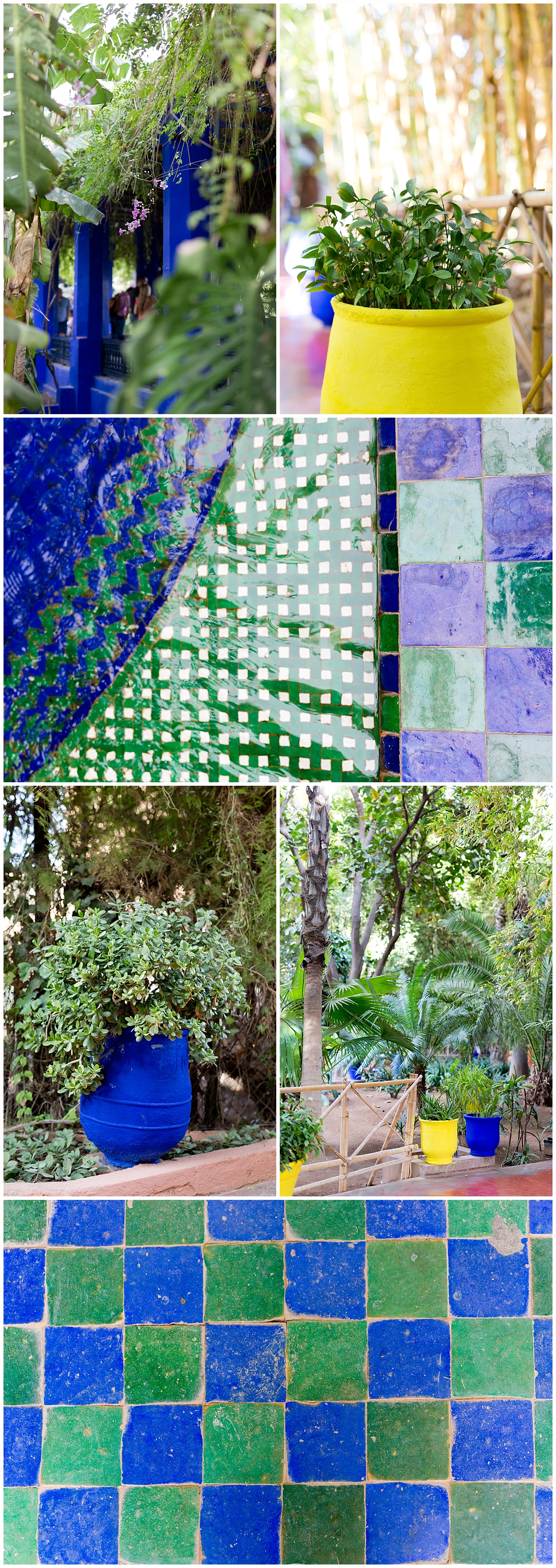 mosaic tile and bold blue and yellow flower pots at Jardin Majorelle