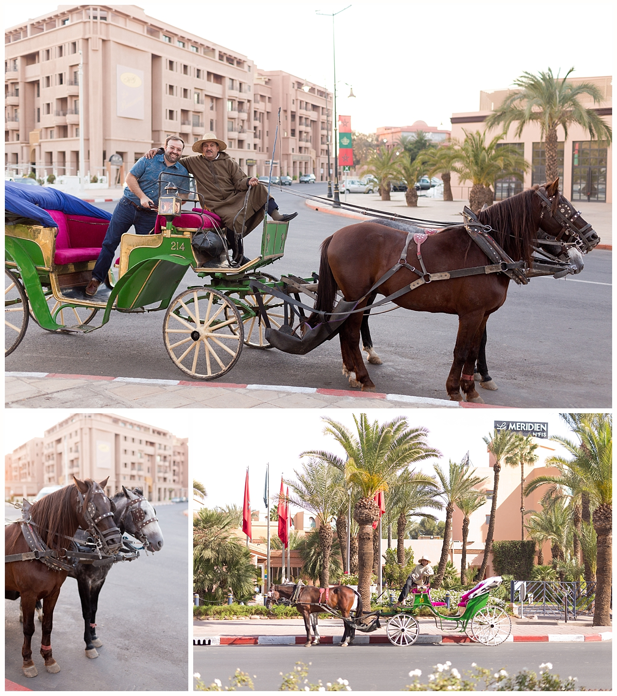 horse and buggy rides in Marrakech, Morocco
