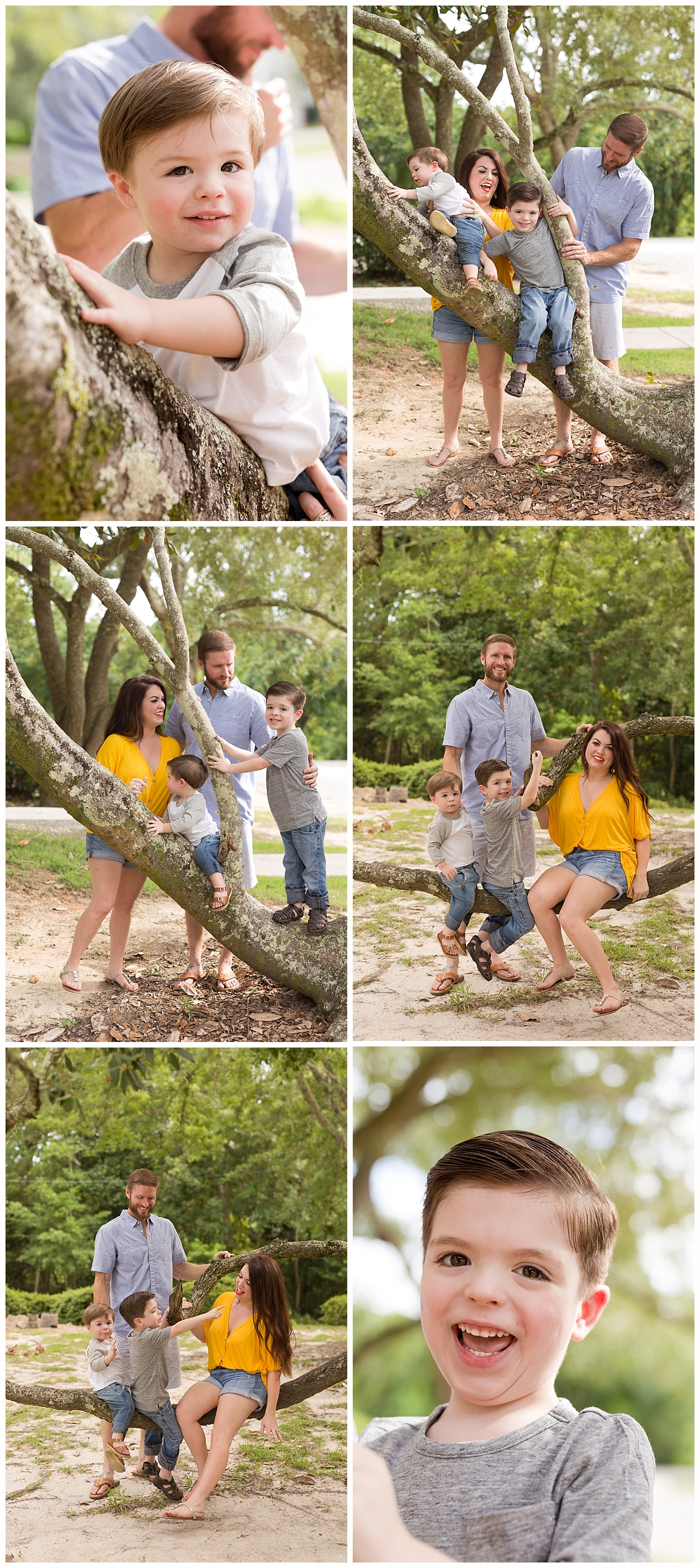 climbing trees for family pictures - Ocean Springs family pictures