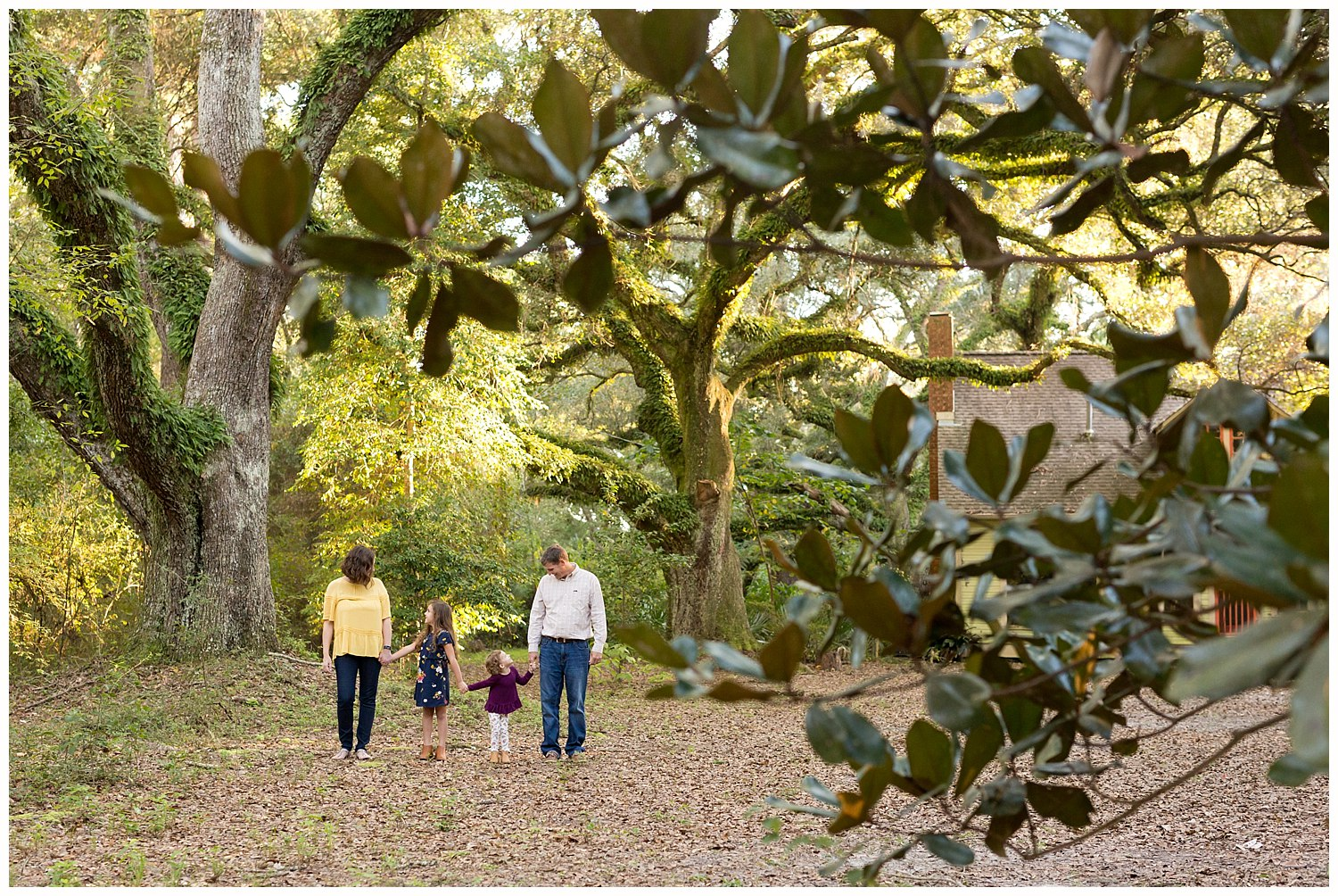 woodsy family photo with live oaks and magnolia tree