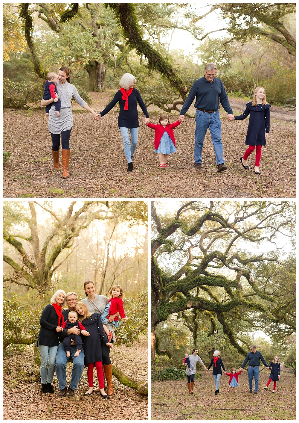 family portraits with live oak trees in Ocean Springs, Mississippi