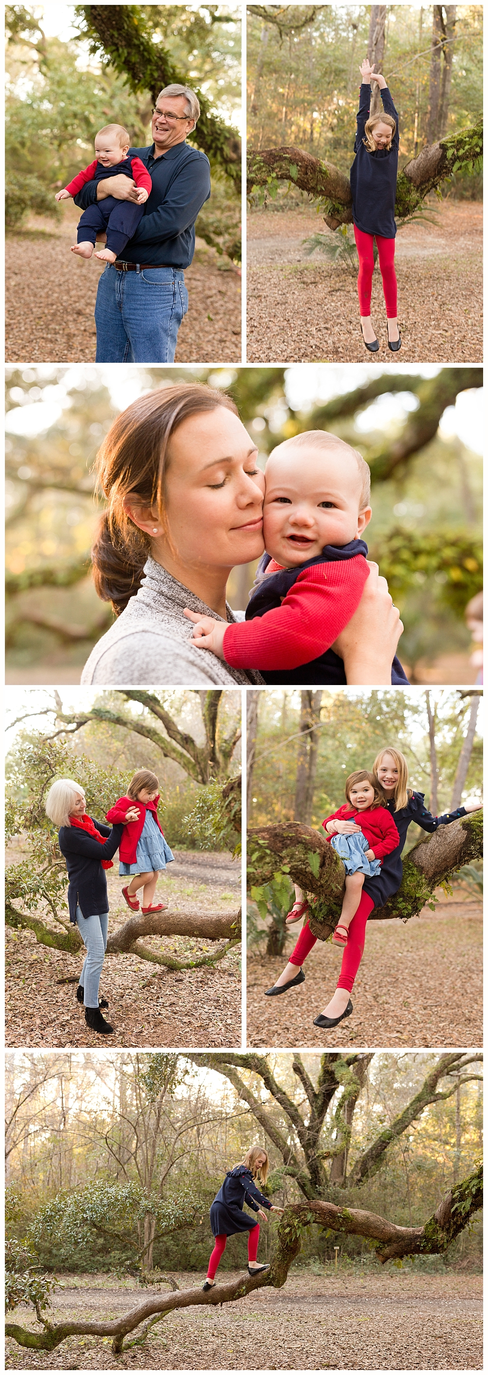lifestyle family photos in Ocean Springs, MS - photos of family and kids climbing trees