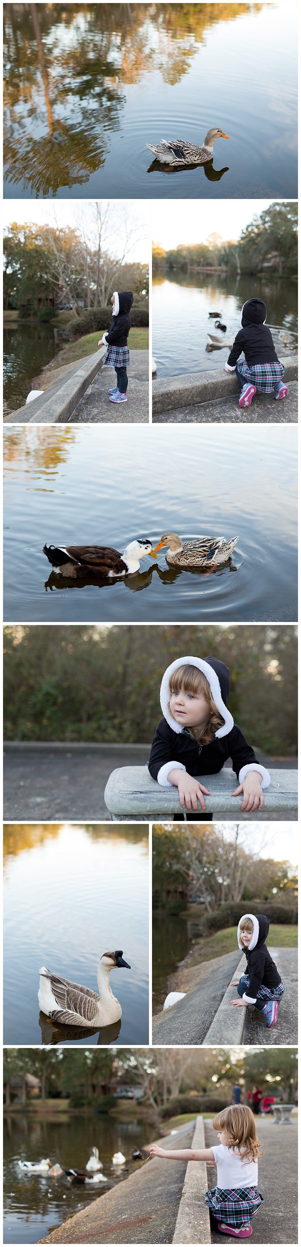 little girl visiting duck pond in Bienville Place - Ocean Springs lifestyle photographer
