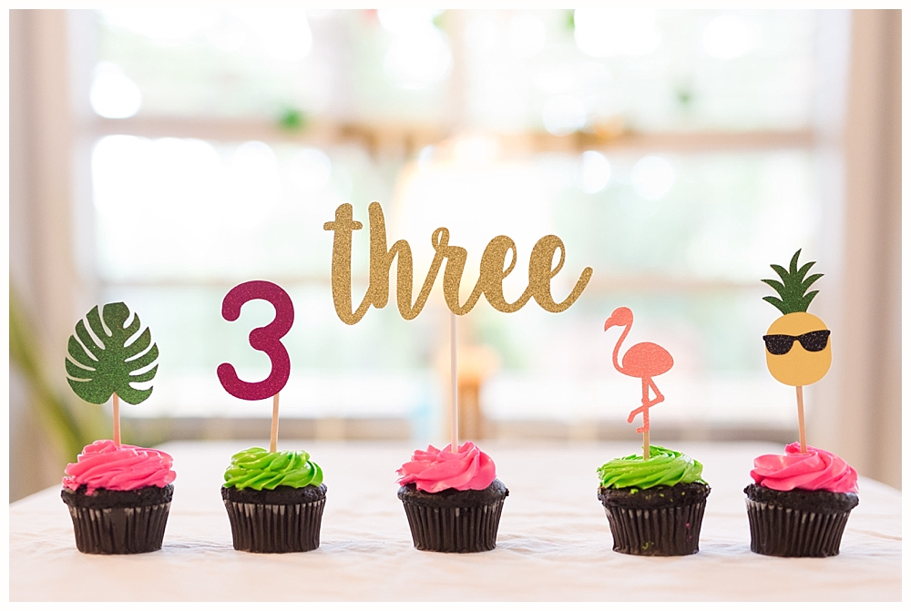 tropical third birthday party cupcake toppers