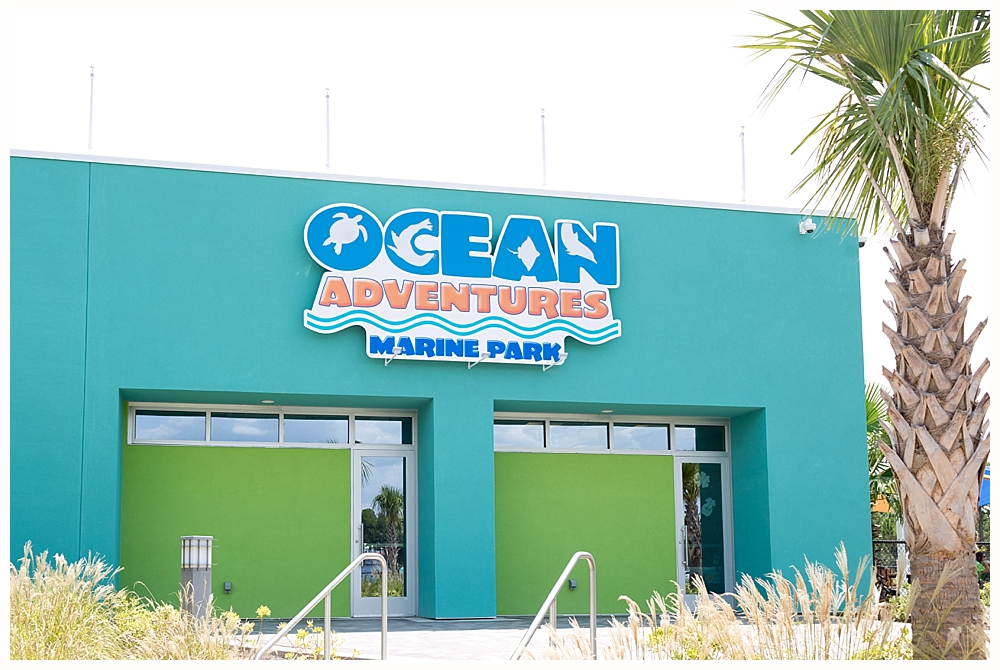 Ocean Adventures Marine Park Gulfport, Mississippi