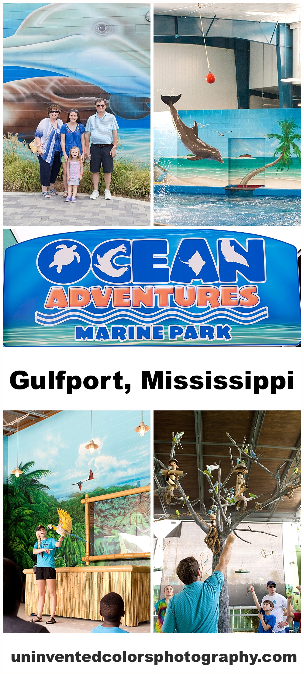 family visit to Ocean Adventures Marine Park - fun things to do with family in Gulfport, Mississippi blog post