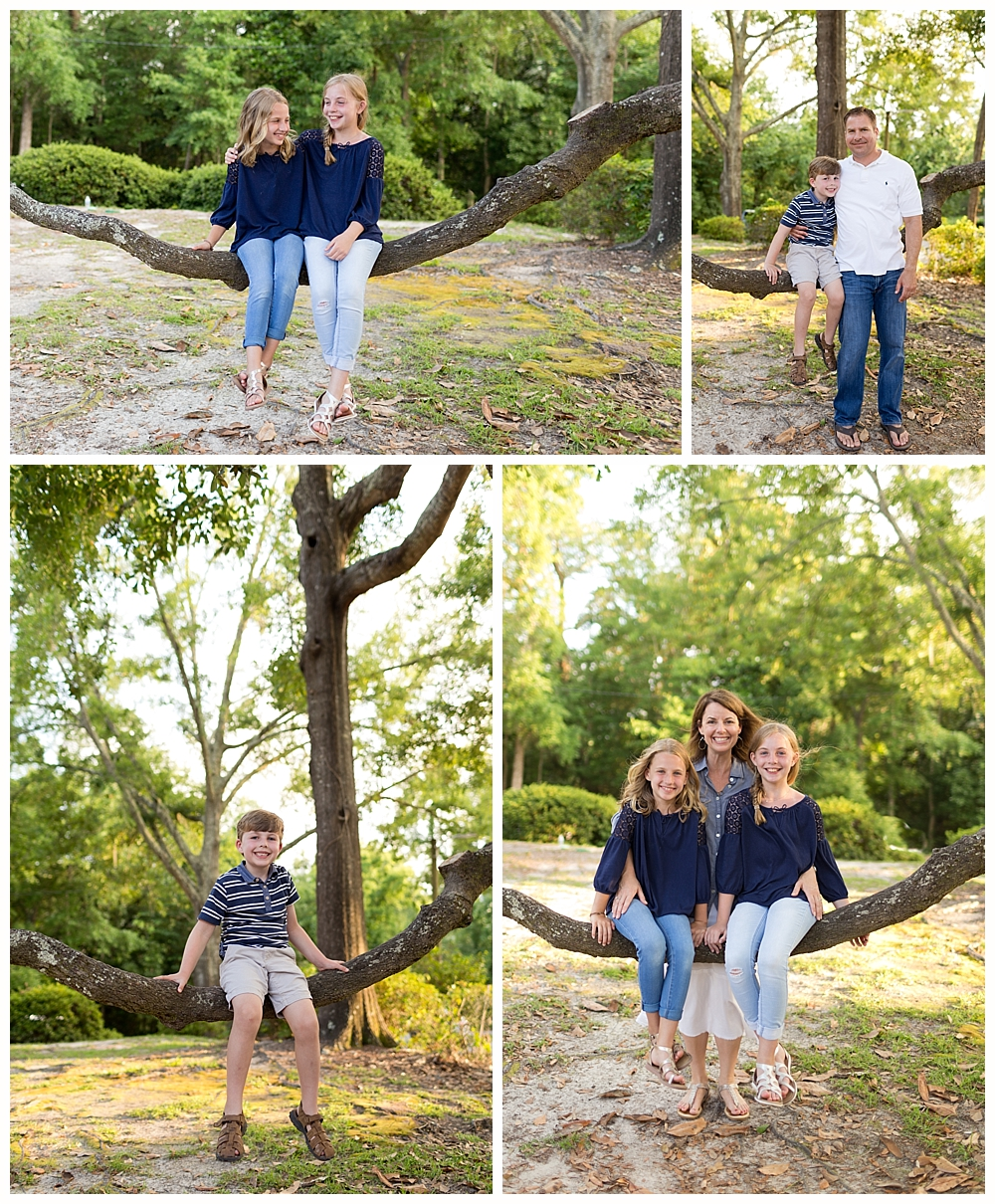 family pictures with live oak tree in Ocean Springs, MS