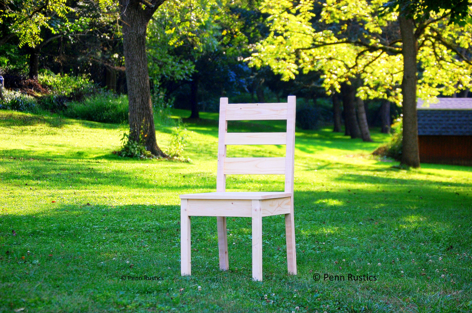 Contemporary Rustic Farmhouse Chair.jpg