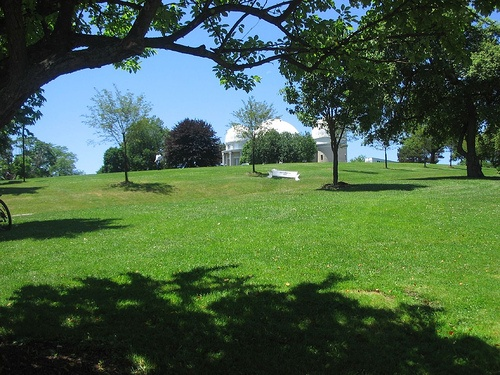 Allegheny Observatory Lawn_5.jpg