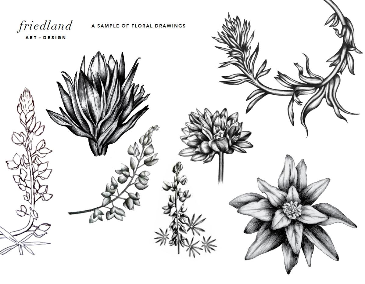 Sample of Flora Anna Friedland.jpg