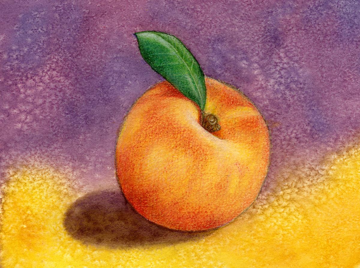 peach workshop.jpg