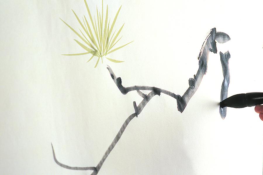 WEYCO.branchstroke-flipped-900.jpg