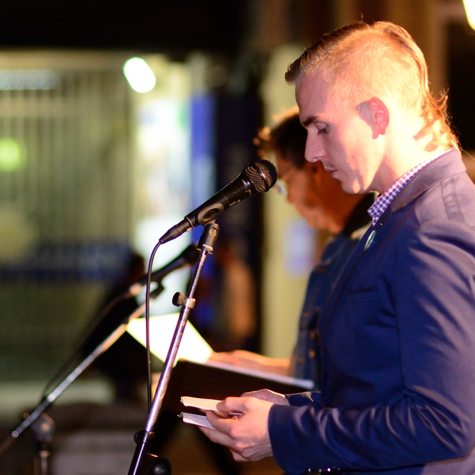 Novi Sad International Literature Festival: Serbia 2014