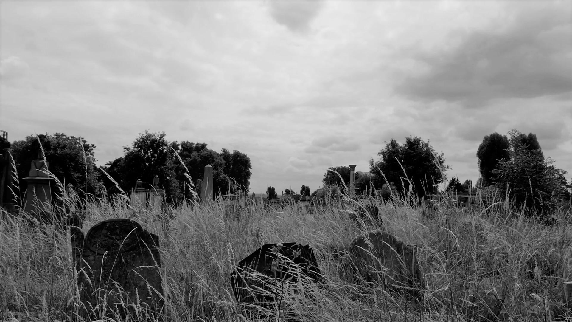Graves (2).jpg