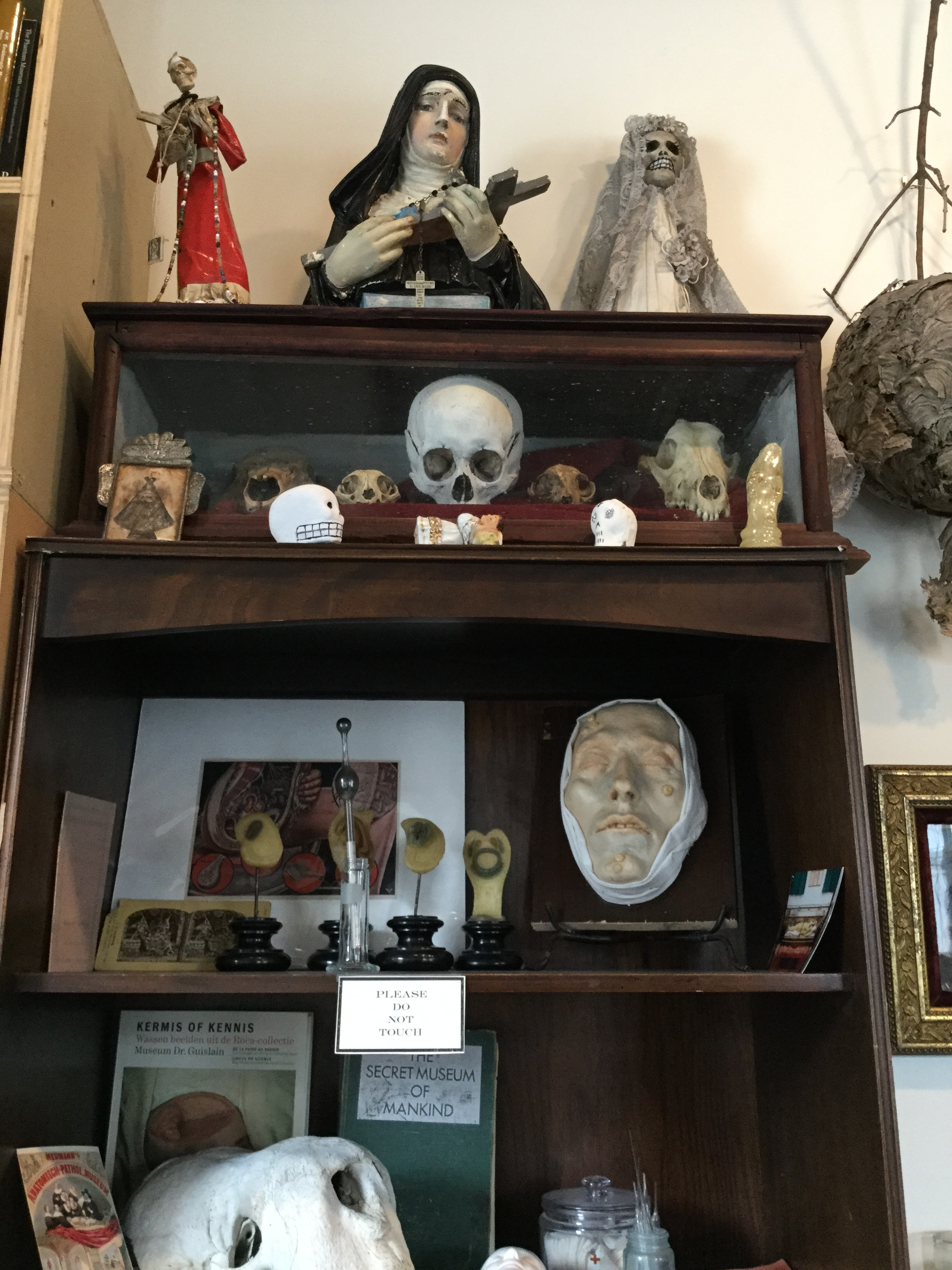 A cabinet from the Morbid Anatomy Museum - note the Catalina in wedding outfit in the top right hand corner.