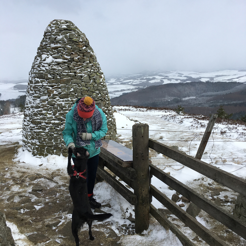 Sometimes Stitch forgets her manners when biscuits are involved... Wearing the  Yarrow hat  and  Teviot Scarf  at the Three Brethren, 16th century cairns marking land boundaries near Selkirk.