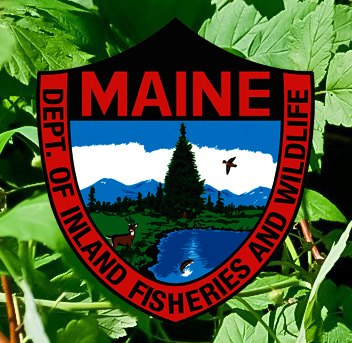maine-inland-fisheries-and-wildlife.jpg