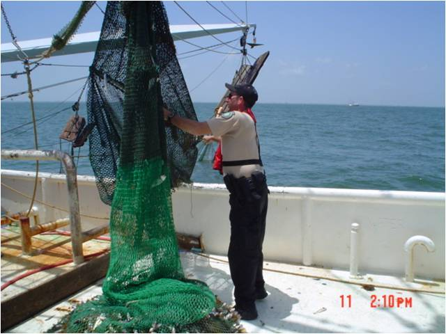 shrimp trawl check 2.jpg