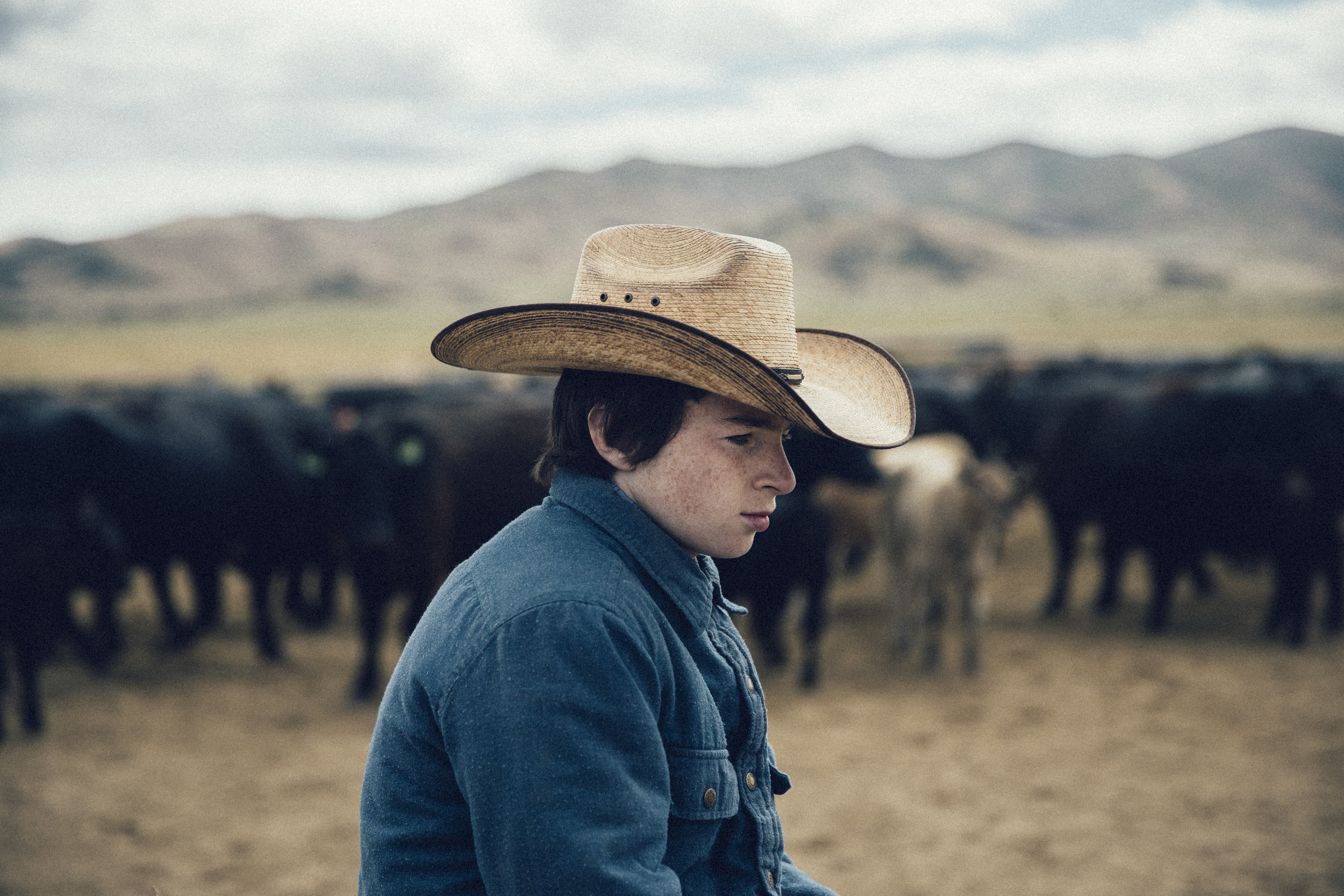 Boy at a branding in Idaho, 2017