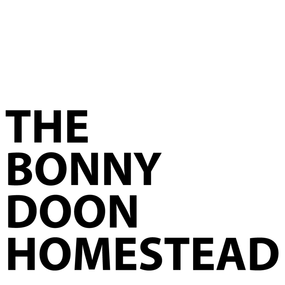The Bonny Doon Homestead - Creating spaces for people to explore togetherness, nature and authentic spirituality in a welcoming atmosphere