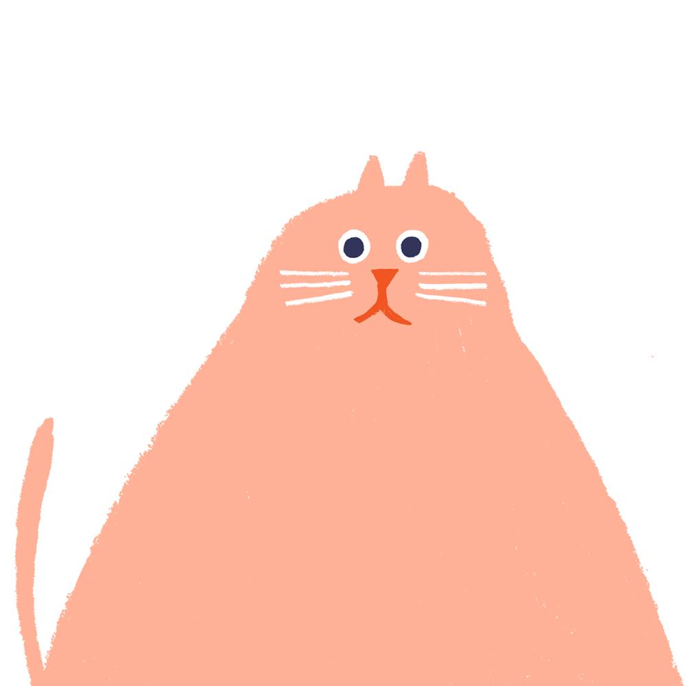 rob-hodgson-cat-03.jpg