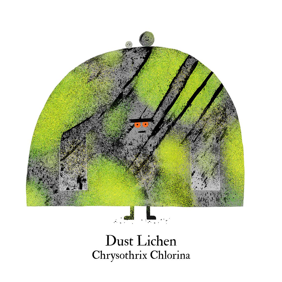 dust lichen white.jpg