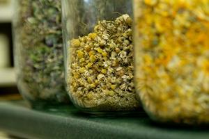 Chamomile herb tea