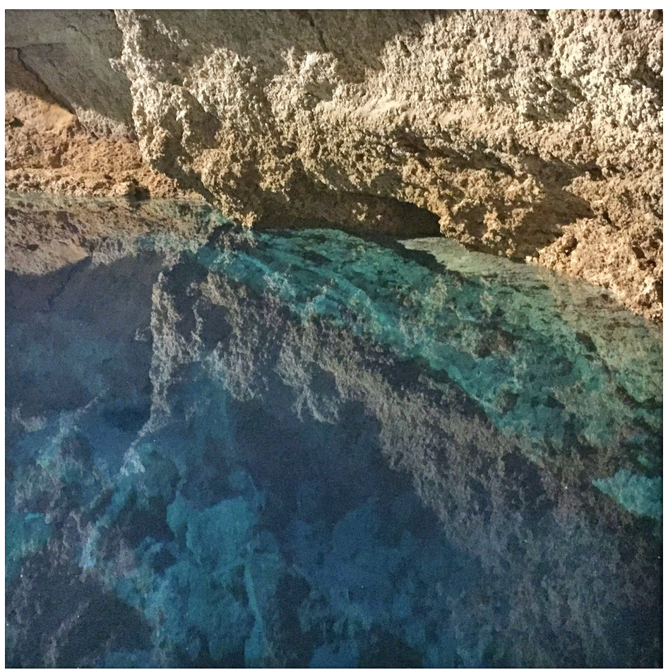 crystaline cenote water