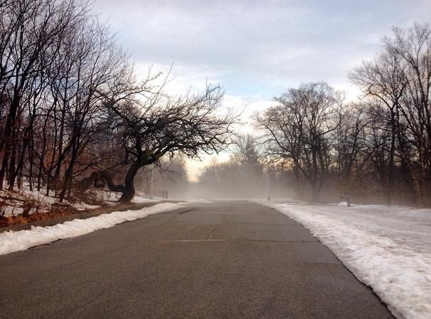 Winter time Prospect Park, Photo by Tayler Rae Dubé