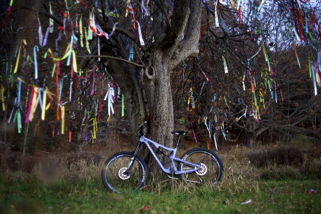 "by Oliver Correa Shot on location planet earth in front of the Climate Ribbon tree.  ""What do love and hope to NEVER lose to climate chaos?"" Learn more here -  http://theclimateribbon.org/english#home"