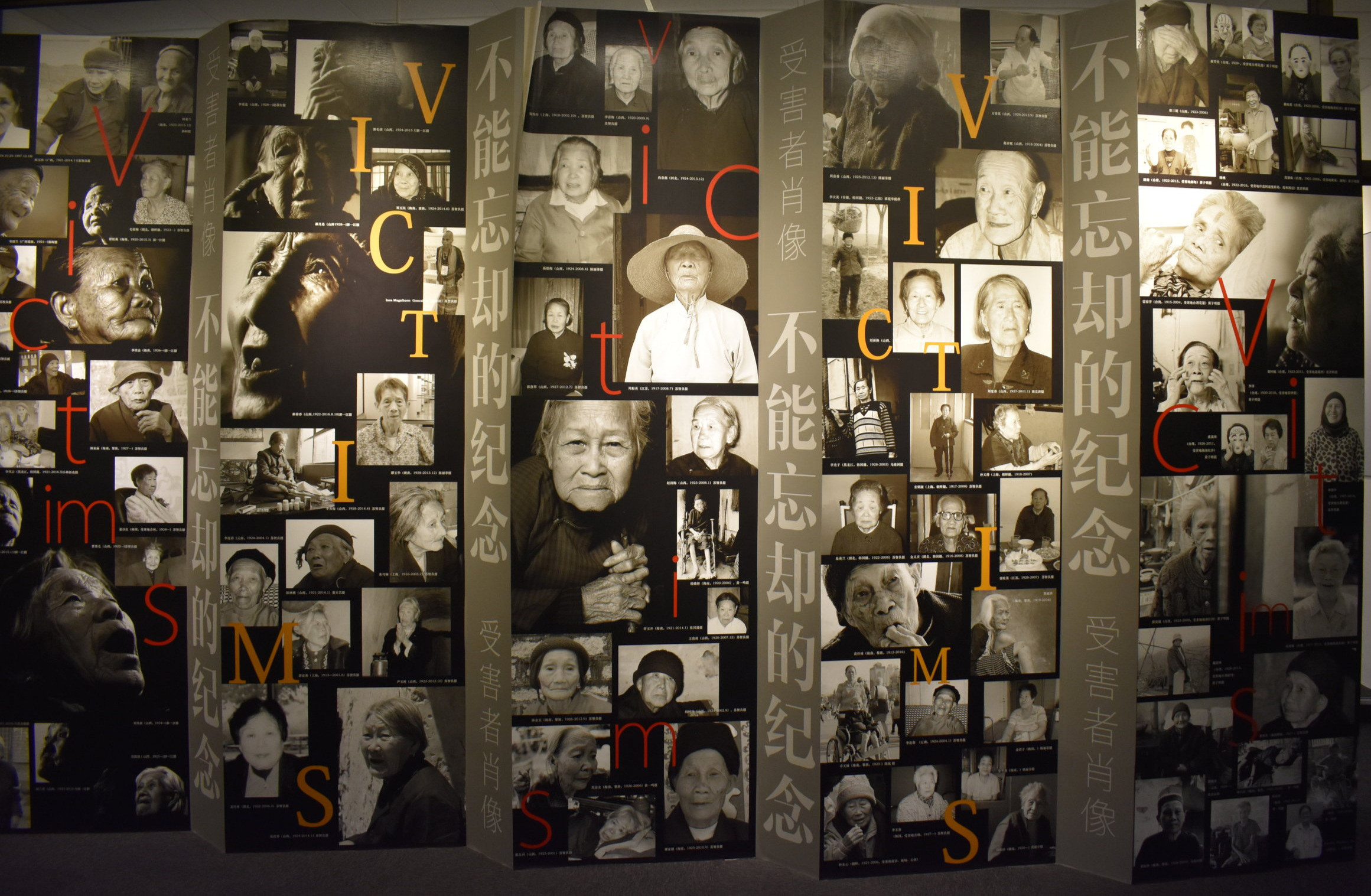 Collage - Victims display