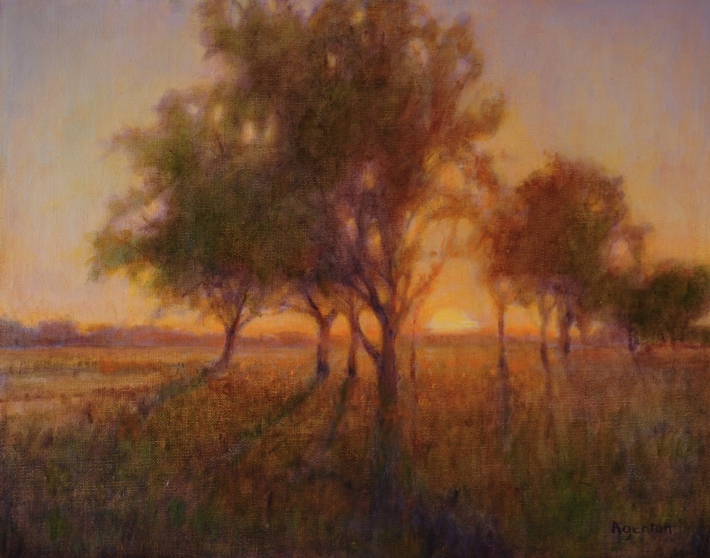 Sunset Oaks. 11 x 14. Oil on linen panel.