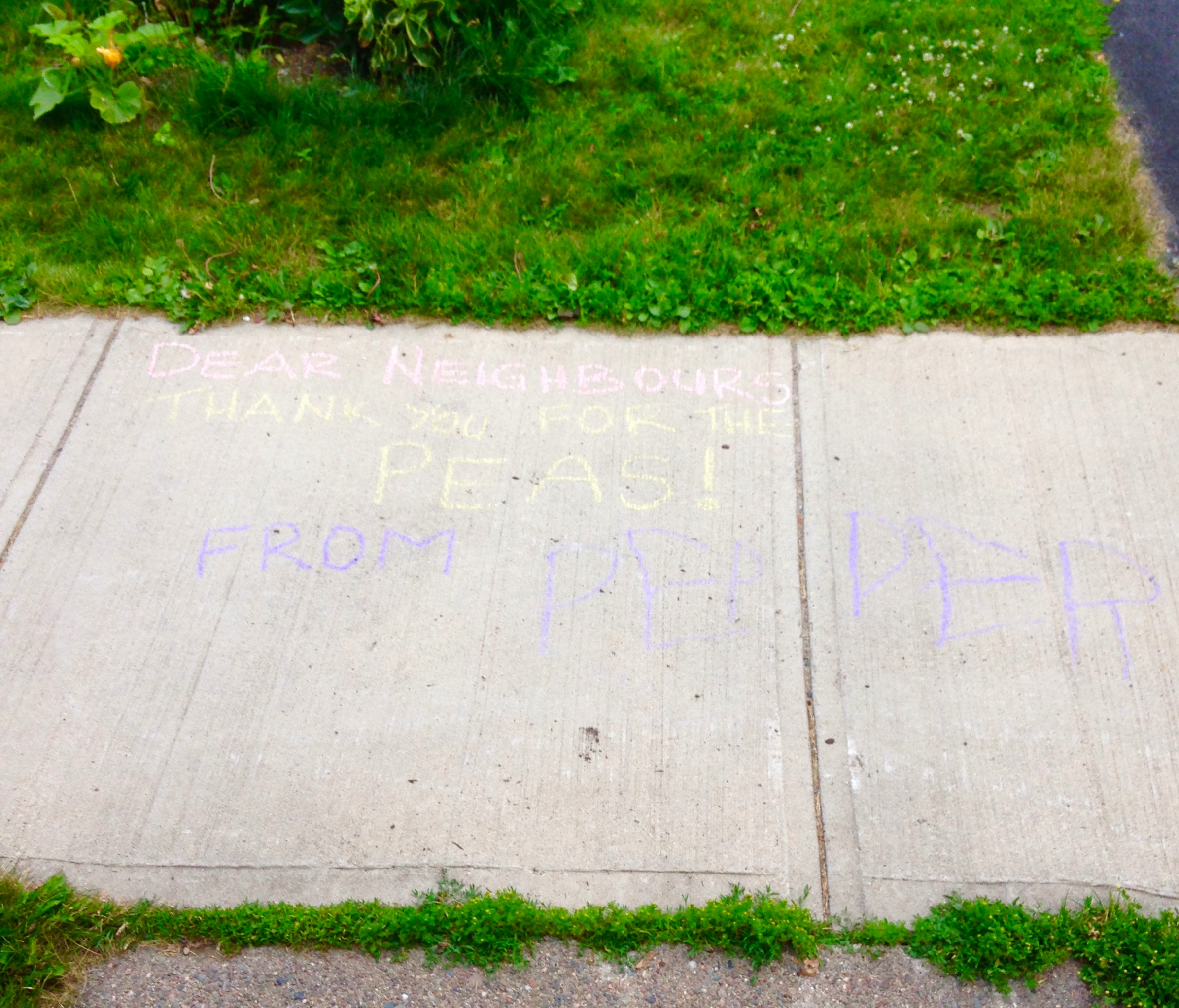 """""""Dear Neighbours, Thank you for the Peas."""""""