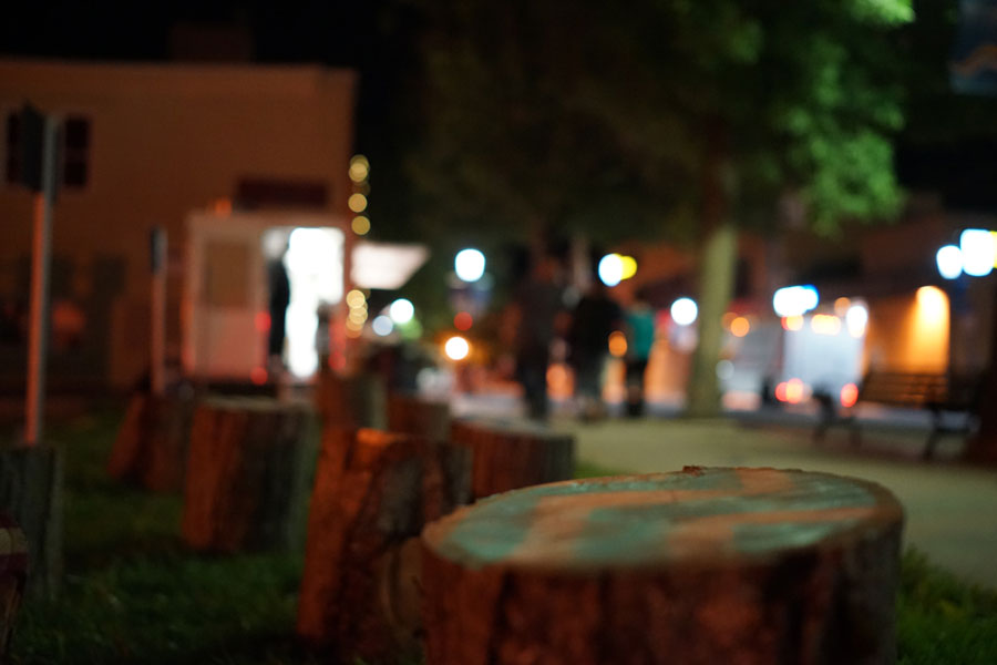 Stumps at night