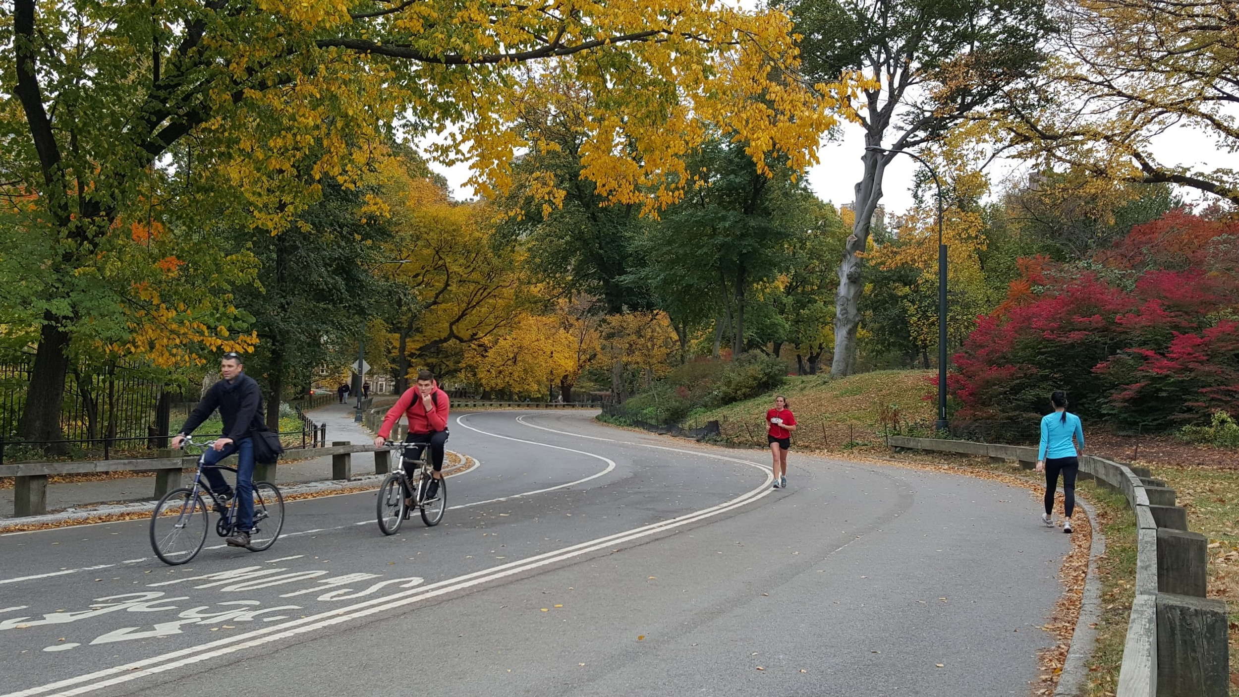 A cycling and jogging road in Central Park, New York City.