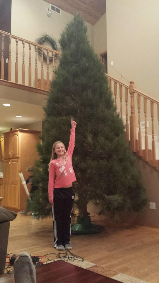 We always had the largest tree, as I planned it.