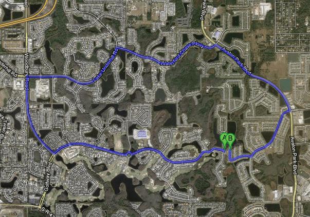 Adjacent backyards, 7 mile driving distance. Source:  Streetsblog.org