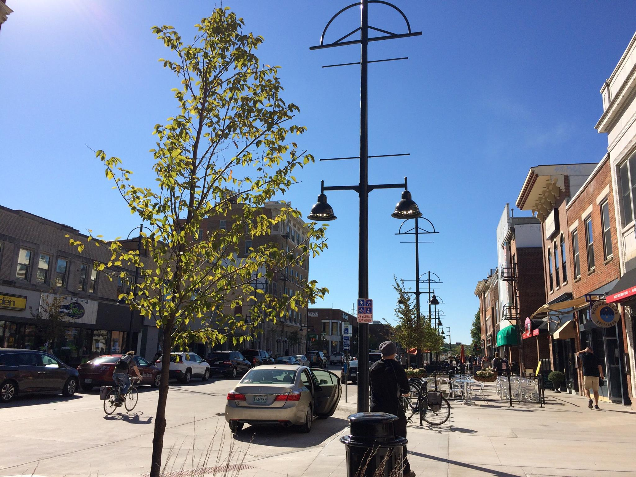 Baby trees in Iowa City's downtown get their start (Photo from  Iowa City Facebook page )