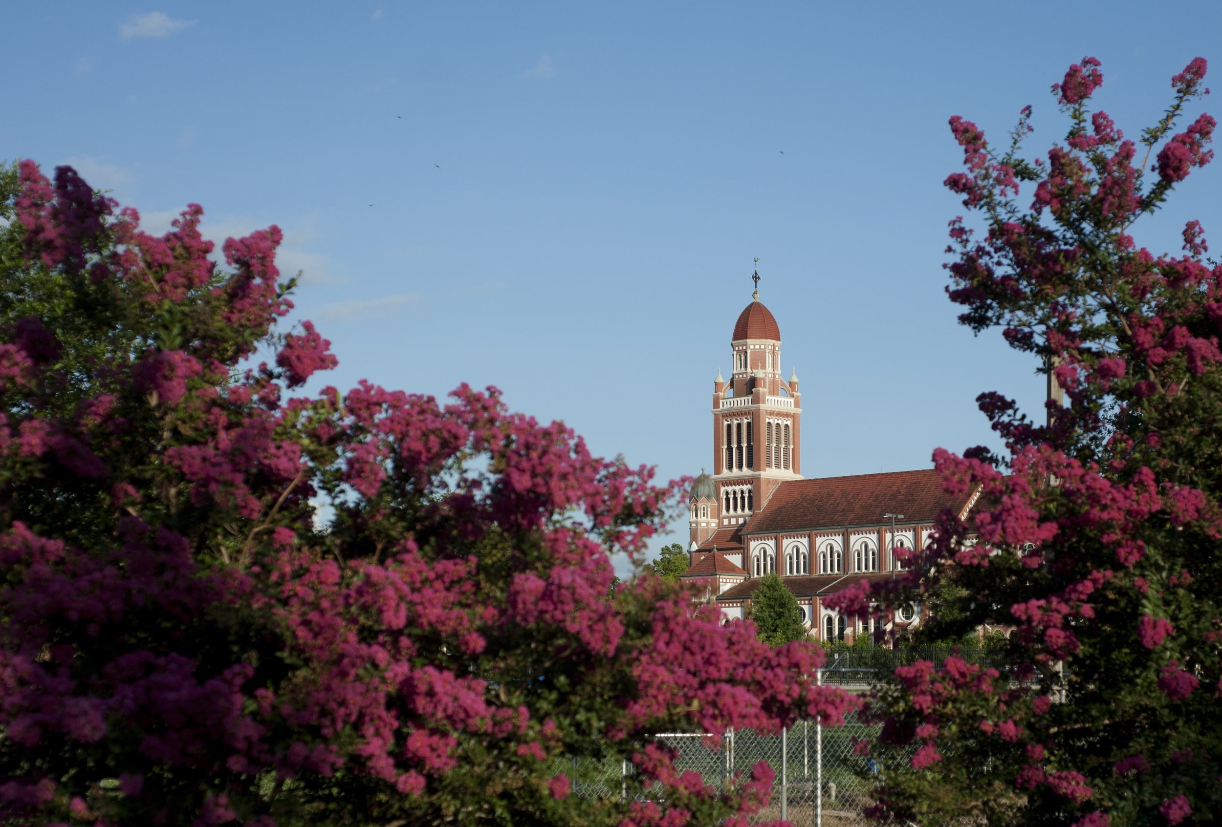 Photo by Denny Culbert, Provided by Downtown Lafayette Unlimited.