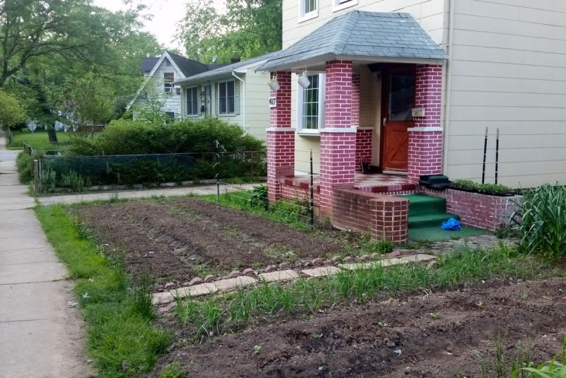 A front yard farm in Mount Ranier, MD. This would be illegal in many communities. (Image by the author.)